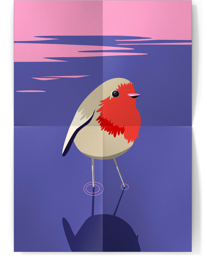 illustration rouge-gorge
